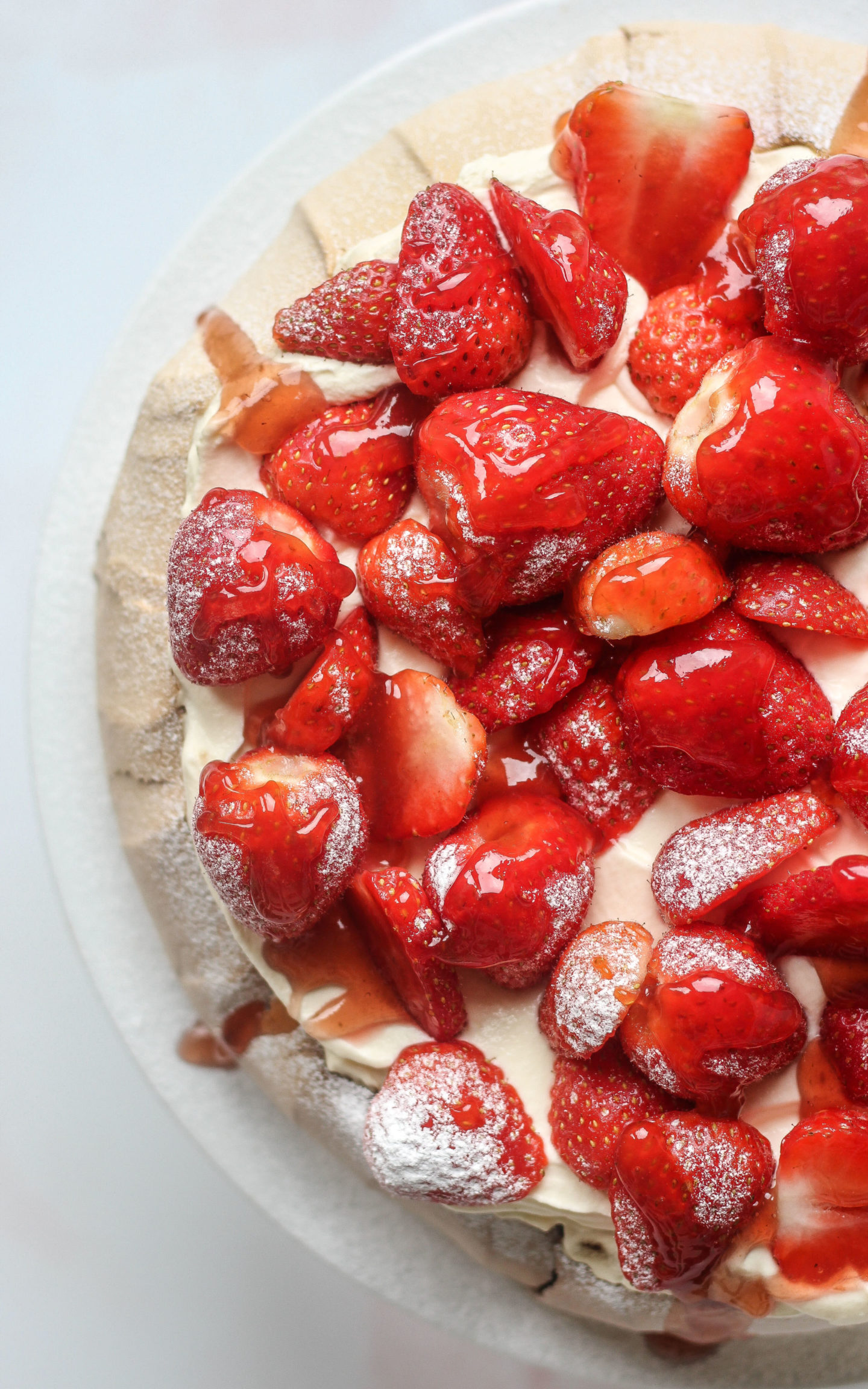 view of pavlova from above