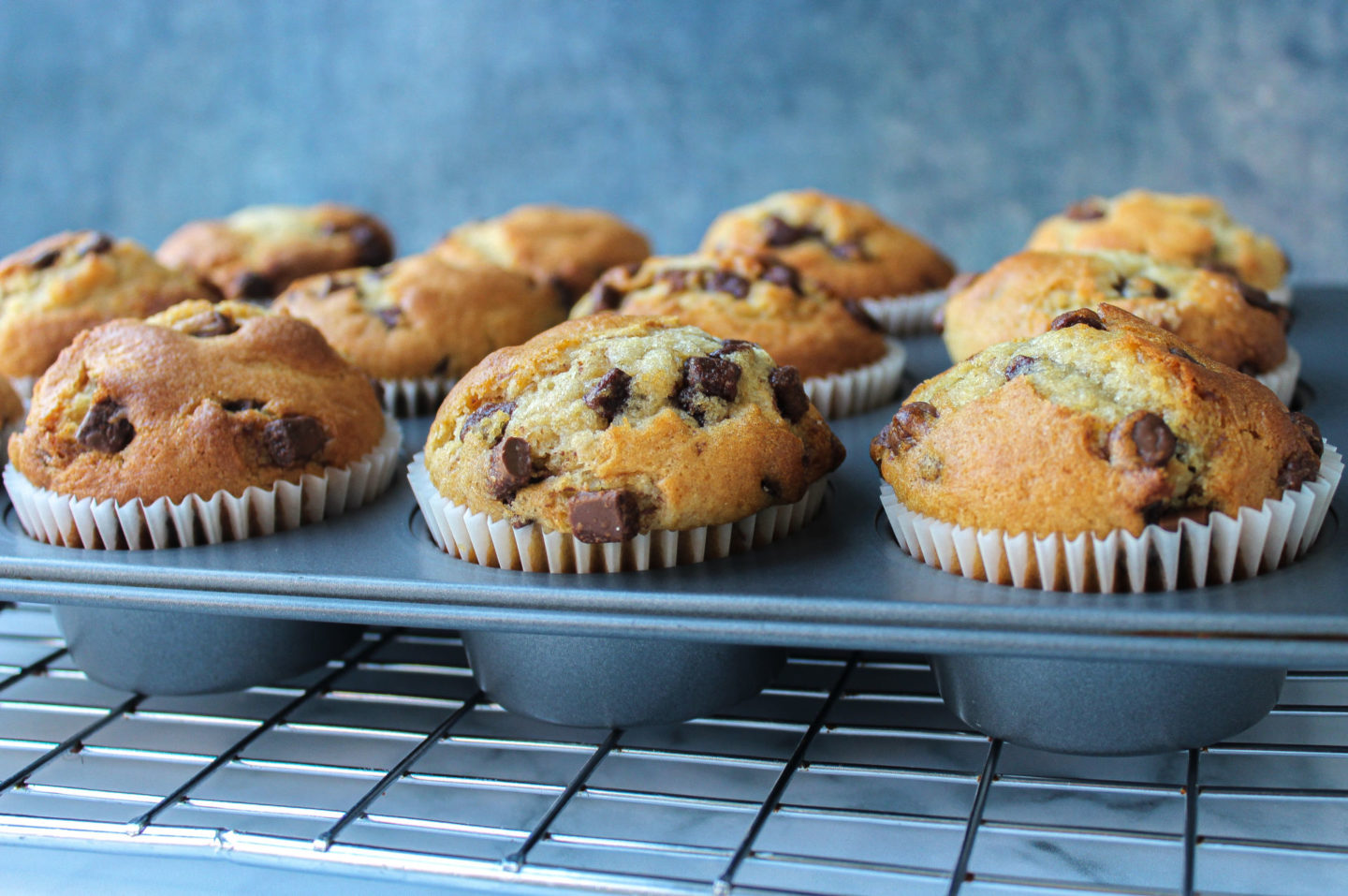 several chocolate chip muffins in a muffin tray